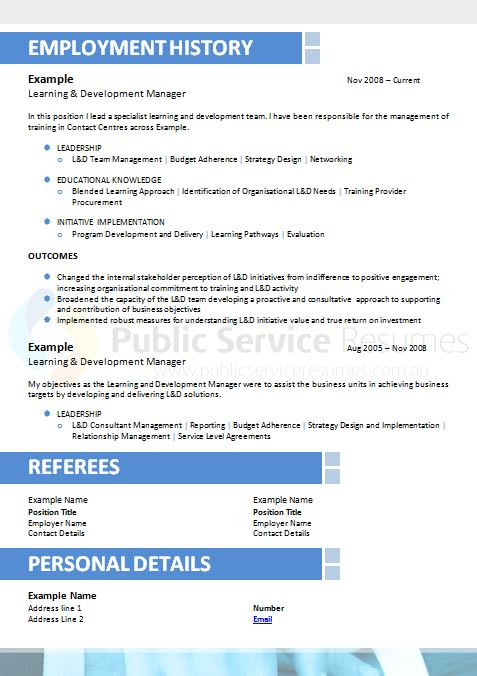 public service resume professional resume  u00bb government resume
