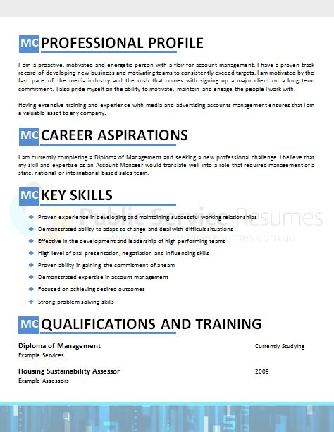public sector accountant resume  u00bb government resume writing services