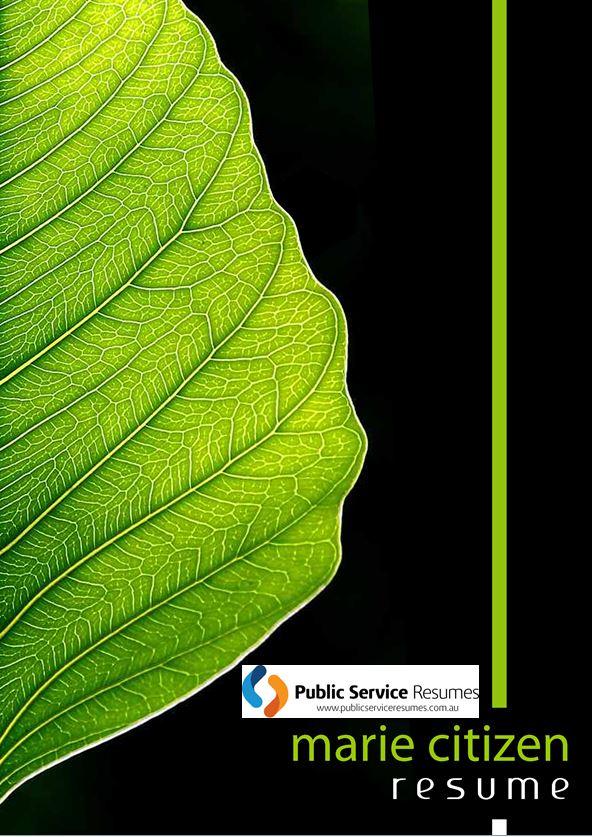 Public Service Resumes 055 fp1