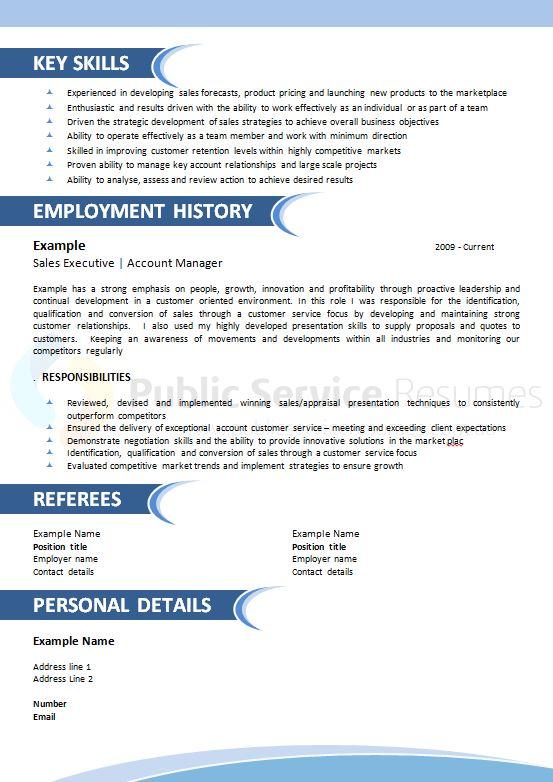 public sector resume  u00bb public sector professional resume
