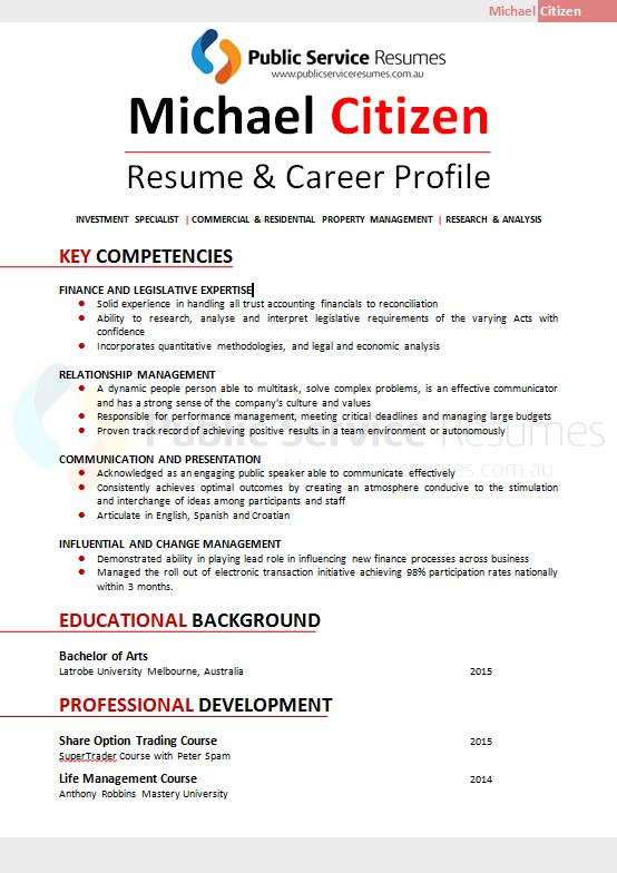 Professional Resume 095  Executive Resume Service