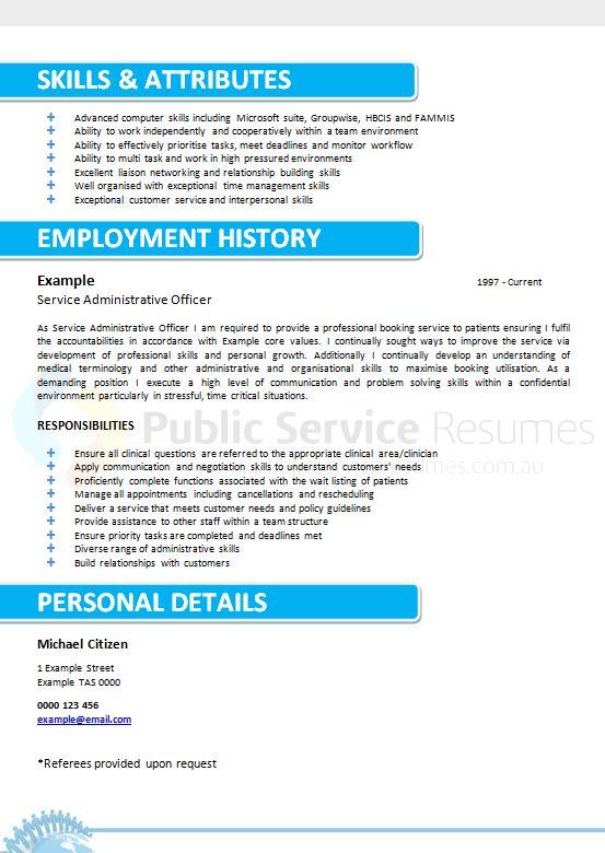 professional modern resume  u00bb public service resumes