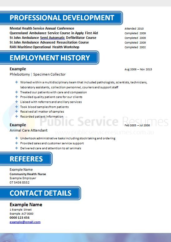 government nurse resume  u00bb private and public sector nurse