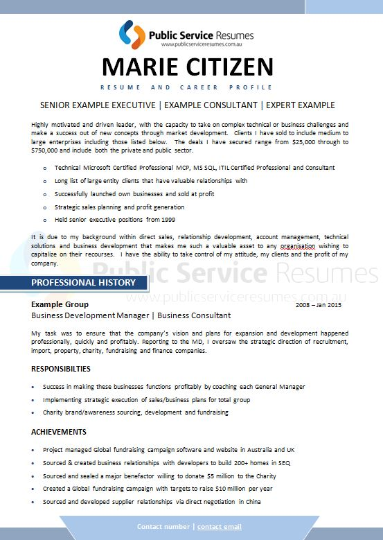 executive sector resume 187 executive government
