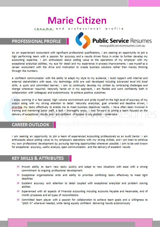Professional Resume 127  Executive Resume Service