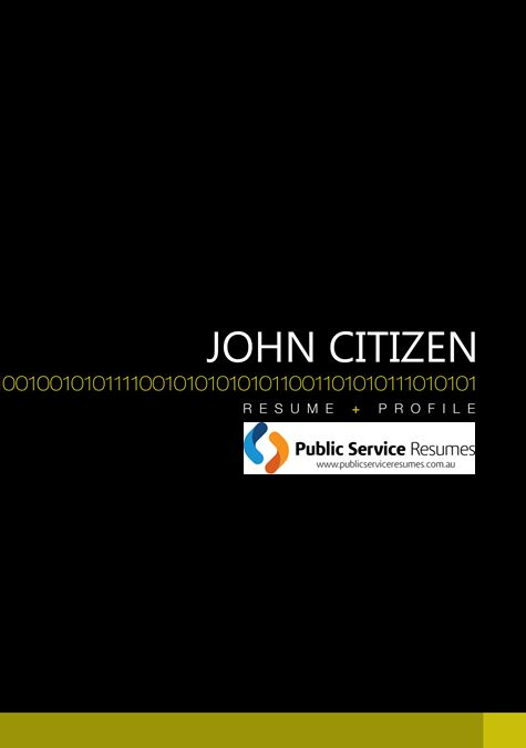 Public Service Resumes 011 fp