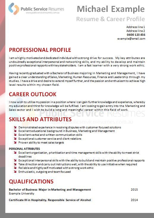 Professional Executive Resume 187 Public Service Resume Examples
