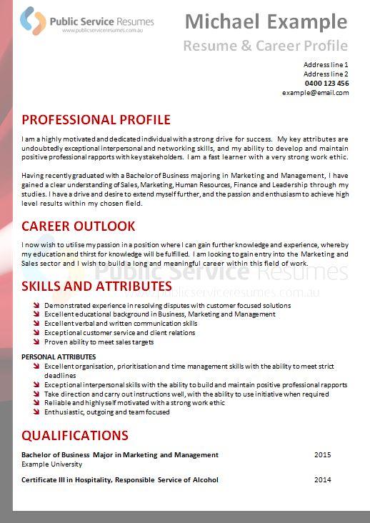 professional executive resume  u00bb public service resume examples