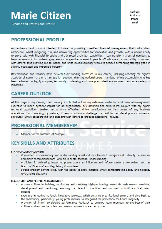 government senior executive resume writing service  u00bb 1300