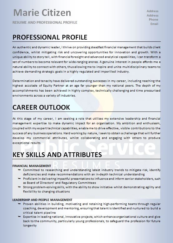 professional human resource resume  u00bb public service resume writers